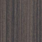 eucalipto california